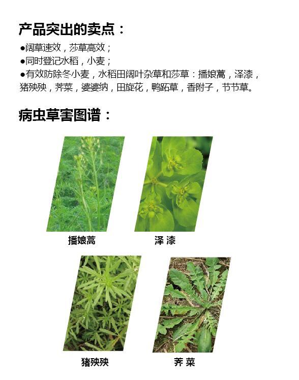 (施尔隆)200克/升氯氟吡氧乙酸EC+85%2甲4氯钠SP